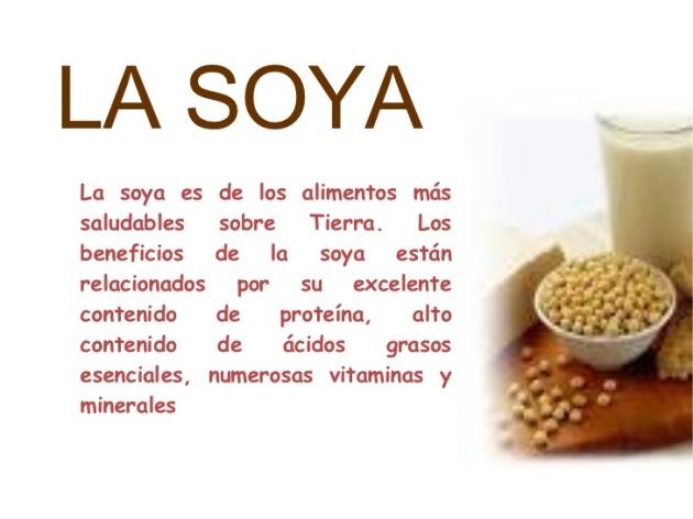 Bondades de las leches vegetales como el de la SOYA.