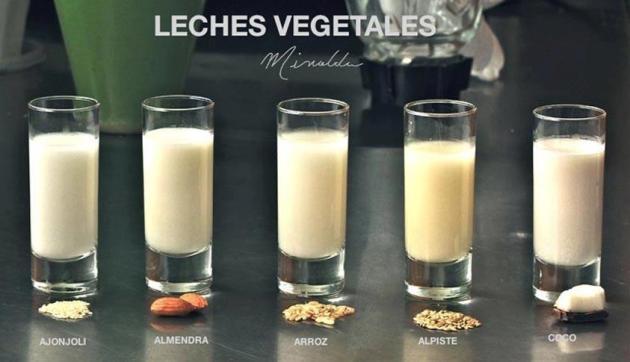 Propiedades de la leche vegetal