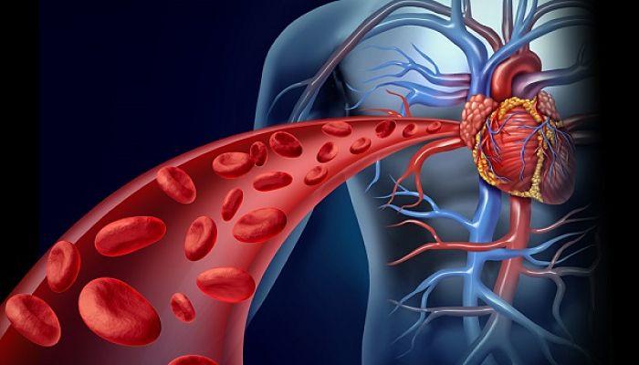 enfermedades cardiacas. Para evitar problemas se recomienda mantener bajos los niveles de lípidos en sangre: enfermedades cardiacas.
