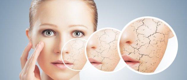 El colageno y sus beneficios para la piel