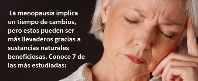 Suplmentos naturales para la menopausia