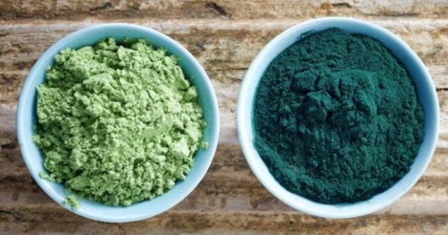 El yodo, el calcio y otros minerales que se encuentran en las algas marinas son fácilmente absorbidos por el cuerpo