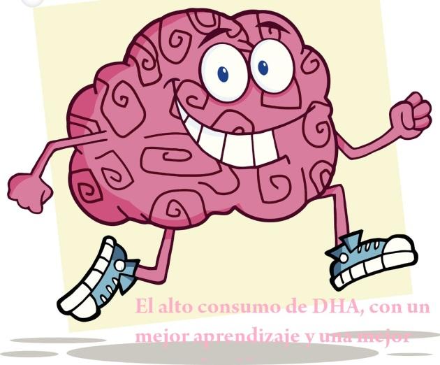 DHA es importante para la salud cerebral, ocular y cardíaca a lo largo de la vida.